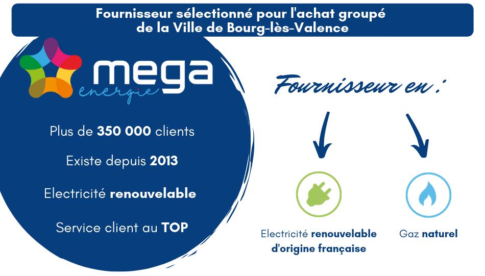 fournisseur sélectionné Mega